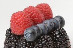 Malinki, czarne jagody i czernicy, Fotografia Royalty Free