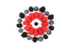 Malinki, czernicy, czarne jagody kłaść out w formie Obrazy Royalty Free