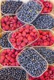Malinki i czarne jagody fotografia stock