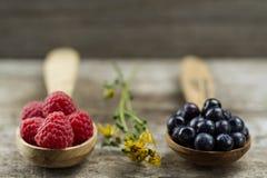 Malinki i czarne jagody w łyżkach na drewnianym tle zdrowe jeść Obrazy Royalty Free