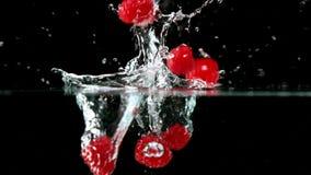 Malinki spada w wodzie na czarnym tle zdjęcie wideo