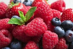 Malinki, truskawki, czarne jagody i mennica, fotografia royalty free