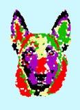 Malinois Dog Art stock image