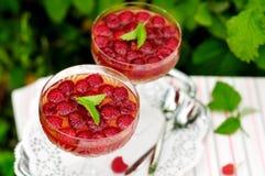 Malinowa deserowego wina galareta zdjęcia royalty free