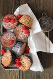 Malinowi muffins Obraz Stock