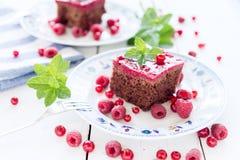 Malinowy czerwonego rodzynku ribes tort Obrazy Stock