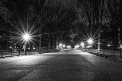 The Mall in black and white. The Mall located in the heart of Central Park contains the largest collections of American Elm Trees Royalty Free Stock Photography