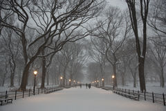 The Mall in Central Park Royalty Free Stock Images