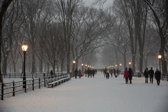 The Mall in Central Park Royalty Free Stock Image