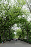 The Mall in Central Park in Manhattan in spring Stock Photo