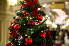 Mall with Christmas tree decorated. With cones, flowers and red balls Stock Image