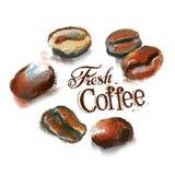 Mall för design för kaffevektorlogo kafeteria eller vektor illustrationer