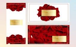 Mall för design för ros för abstrakt vattenfärg för vektor röd Royaltyfri Fotografi