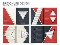 Mall för design för vektorbroschyrorientering Royaltyfri Foto