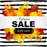 Mall för höstförsäljningsdesign Arkivfoto