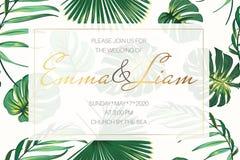 Mall för kort för bröllophändelseinbjudan Ljus exotisk tropisk djungel - den gröna palmträdmonsteraen lämnar gränsramen stock illustrationer
