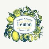 Mall för logo för citronträd Hand dragen vektorfruktillustration Inristad stil Citrus design för tappning royaltyfri illustrationer