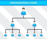 Mall för organisationsdiagram Arkivfoto