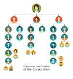Mall för organisatoriskt diagram av korporationsaffärshierarkin Arkivfoto