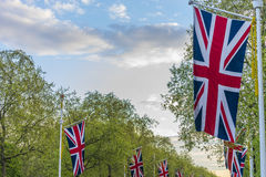 Mall flags and trees. Lines of union jack flags hanging along the Mall, London Stock Photos