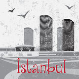 Mall Of İstanbul with birds Royalty Free Stock Image