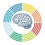 Mall med den abstrakta illustrationen för mänsklig hjärna Arkivbilder