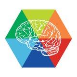 Mall med den abstrakta illustrationen för mänsklig hjärna Arkivbild