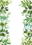 Mall med grönska royaltyfri illustrationer
