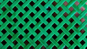 Malla verde del papel pintado Foto de archivo