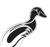 Mallard Duck. A stylized drawing of a Mallard duck, black & white,  vector illustration Stock Image