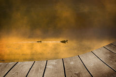 Mallard duck and baby and empty wooden deck table. Stock Photo
