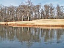 Mallard jezioro przy Tanglewood parkiem Fotografia Royalty Free