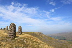 Mallerstang, Cumbria, R-U de sanglier est tombé Photo stock
