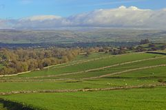 Mallerstang and the Eden Valley countryside views. Mallerstang and the Eden Valley Green fields and water meadows with fell behind in Cumbria United Kingdom royalty free stock photos