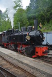 Mallet Steam Railway Locomotive G 2x 2/2 105 SEG Stockfotos