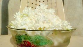 Malli bianco molto attraente in ciotola di vetro immagini stock