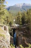 Malligne canyon bridge jasper alberta. Maligne canyon bridge jasper national park alberta Stock Images
