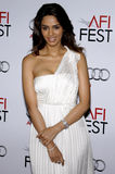 Mallika Sherawat. At the AFI FEST 2009 Screening of The Road held at the Grauman's Chinese Theater in Hollywood, California, United States on November 4, 2009 stock photos