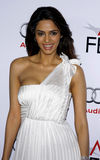 Mallika Sherawat. At the AFI FEST 2009 Screening of 'The Road' held at the Grauman's Chinese Theater in Hollywood, USA on November 4, 2009 royalty free stock image