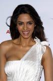 Mallika Sherawat royalty free stock photos