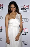 Mallika Sherawat. At the AFI FEST 2009 Screening of 'The Road' held at the Grauman's Chinese Theater in Hollywood, USA on November 4, 2009 stock photo