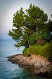 Mallorca海岸 免版税库存照片