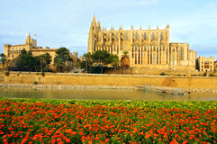 Mallorca. Cathedral of  Palma of mallorca in spain Stock Photography