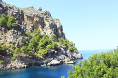 Mallorca Arkivbild