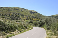Mallorca, Balearic Islands, Spain. Country road in Landscape at Arta, Mallorca, Balearic Islands, Spain, Europe Royalty Free Stock Photo