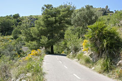 Mallorca, Balearic Islands, Spain. Country road in Landscape at Arta, Mallorca, Balearic Islands, Spain, Europe Stock Photography