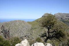 Mallorca, Balearic Islands, Spain Stock Images