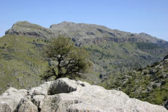 Mallorca Balearic Islands, Spain. Mountains Serra de Tramuntana, Mallorca, Balearic Islands, Spain, Europe Stock Photography