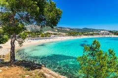 Mallorca beach Palmanova. Spain Majorca beach Platja des Carregador Palmanova, Mediterranean Sea, Balearic Islands Royalty Free Stock Image