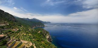 Mallorca, campos do vinho Foto de Stock Royalty Free